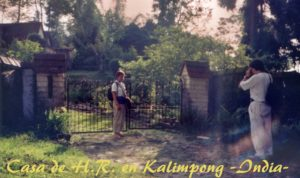 Crookety Kalimpong 1